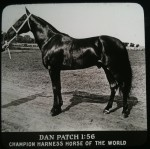 Dan Patch Horse