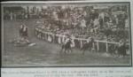 Davison Suffragette Horse 4