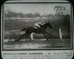 Movich America's Fastest Racehorse
